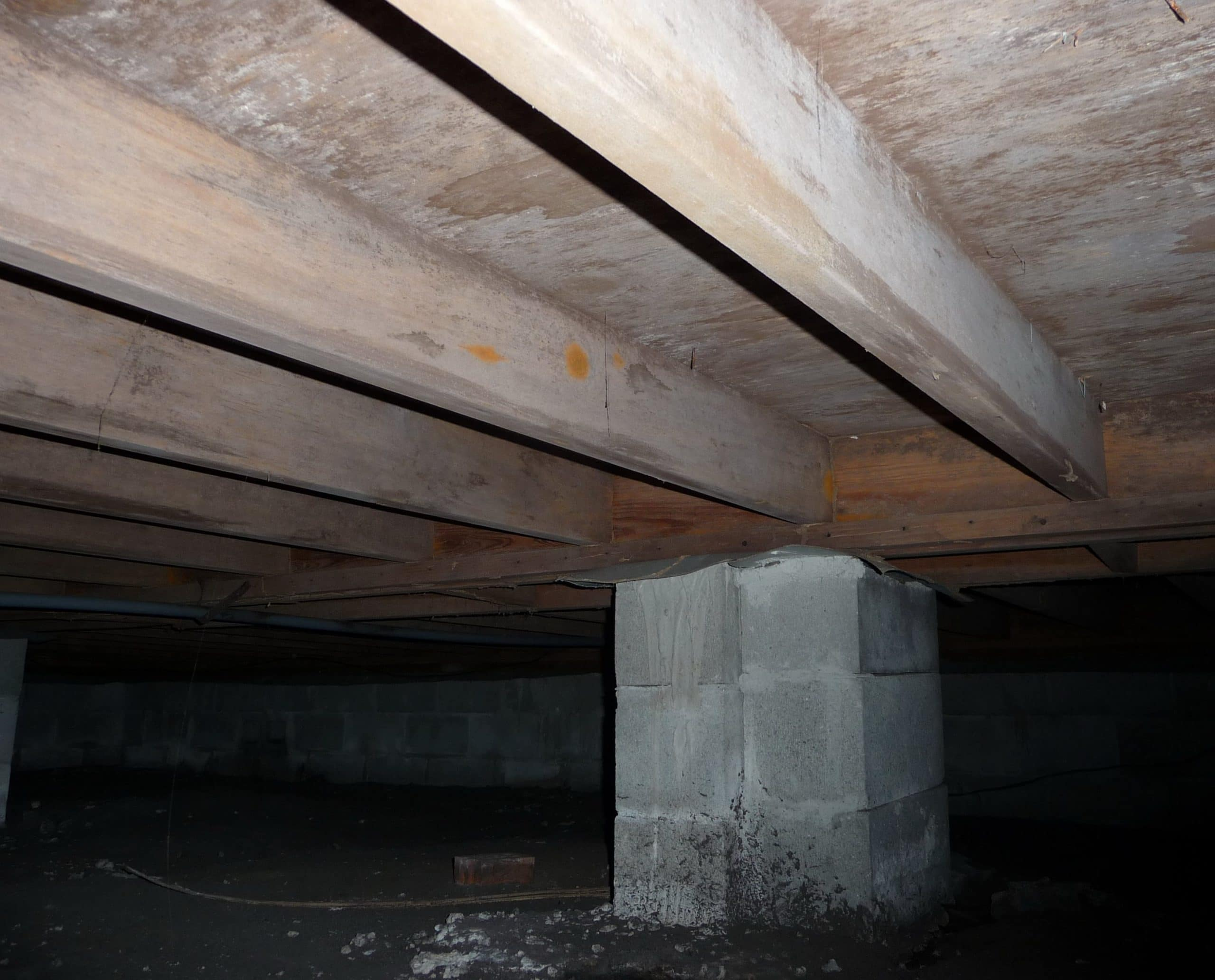 Crawl Space Mold Tips Amp Tricks To Prevent It And Save Big